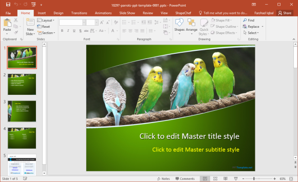 Free Parrots PowerPoint Template