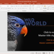 free bird powerpoint template