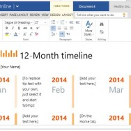 12-Month Timeline for Progress Reports, Project Planning and History Lessons