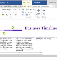 Create Professional Timelines in Minutes