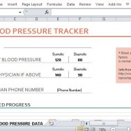 Professionally Designed Blood Pressure Tracker