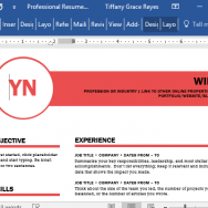 professional-polished-resume-template-in-word